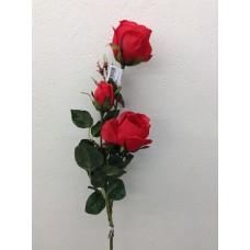 Roos, plant, 85 cm, 2 bloemen, 1 knop, rood