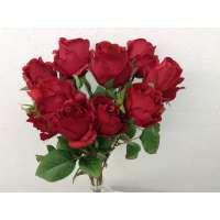 """Roos, struik, 18.5"""", 10 bloemen, rood"""