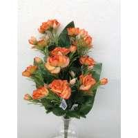 Roos, halfstruik, 50 cm, 12 bloemen, 24 bloemknoppen, oranje